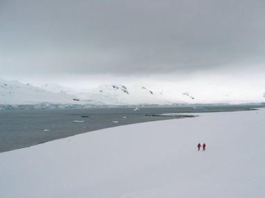 8831a-antarctique_1